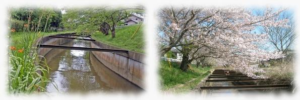 [照片]中川的風景